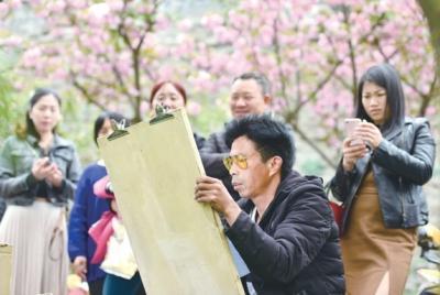 """太浪漫!荆州最美""""樱花大道""""原来在这里(图)"""