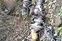 长征六号火箭升空 零件残骸坠落在十堰竹山乡村