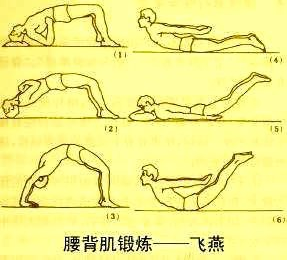 腰背部肌肉康复训练