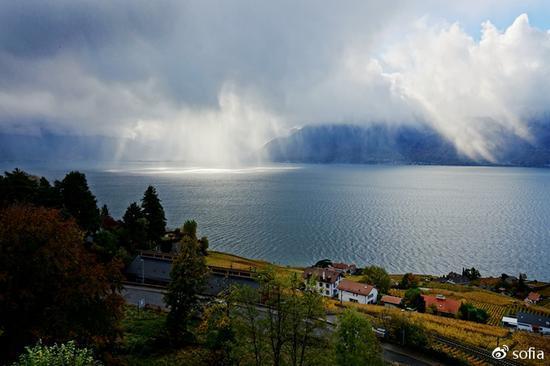 """日内瓦湖畔的金色梯田,瑞士最""""醉人""""的秋色"""