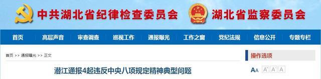 潜江通报4起违规典型案例 多名干部被处分