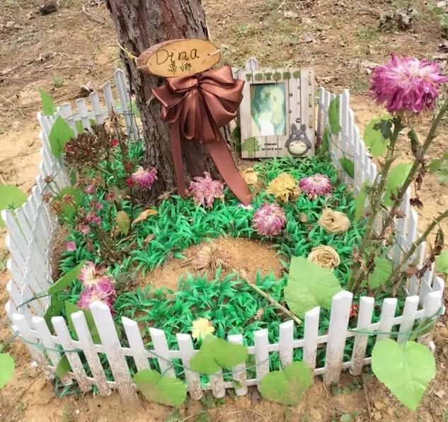 人物丨武汉首位宠物殡葬师:卖掉陪嫁房告别500条生命