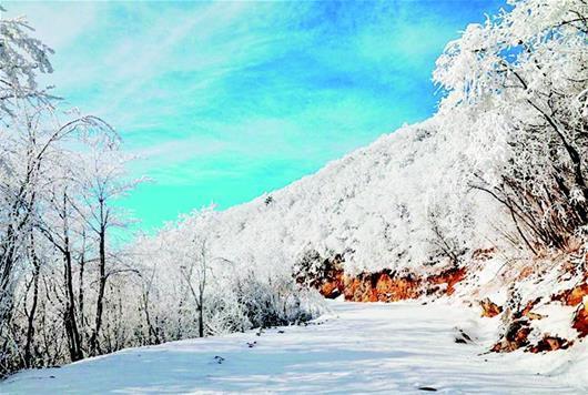 保康县降大雪低温达-12℃ 出现雾凇景观美如画
