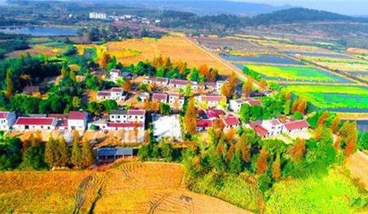 京山210万元奖三季度4个美丽乡村 个个颜值爆表