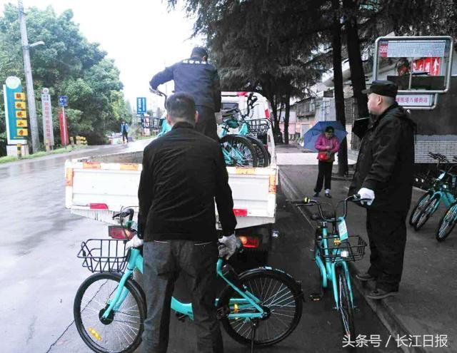 600多辆青桔单车违规投放武汉 城管部门连夜暂扣