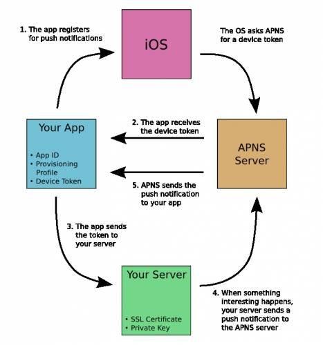 iOS开发如何实现消息推送机制