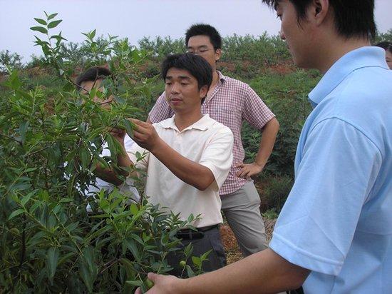 2011湖北省青学联大会代表风采——师智敏