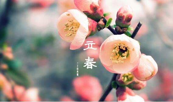 2015立春时间及习俗