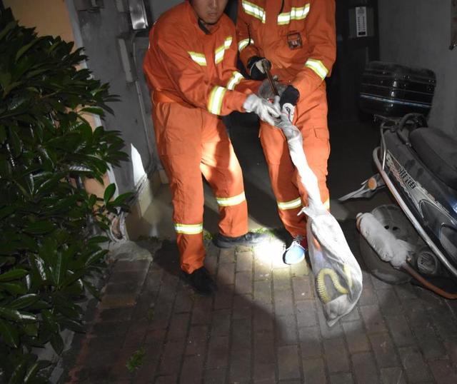 近2米长大蛇在地面游动 周围居民吓得立即报警