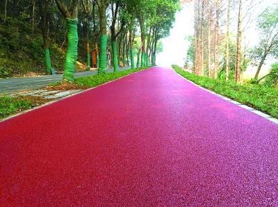 武汉东湖绿道森林道市政道路完工 简直美爆了