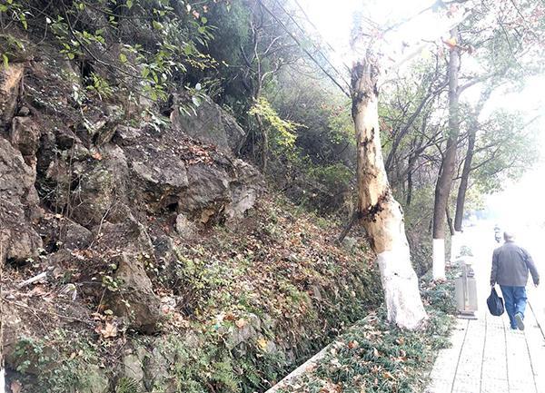 荆门一小区附近山上大石裸露 市民担心巨石滑落