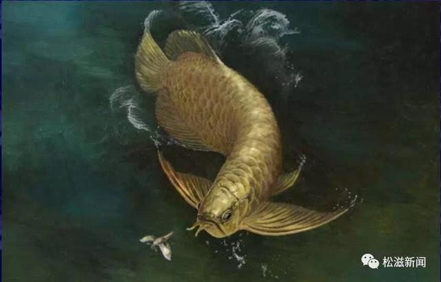 重大发现!松滋现世界最完整金龙鱼化石骨骼标本