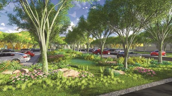 宜昌一公园建生态停车场 150个车位植100棵树图片