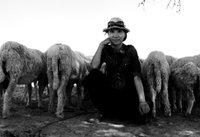 湖北美女两年穷游七国百城 曾路遇醉汉险被拖走 - 九头鸟 - ...欢迎四方博客...