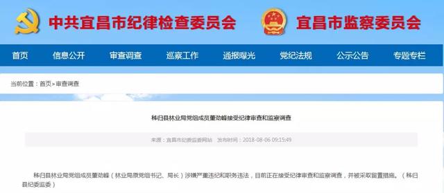 宜昌市纪委发布通报 一名干部正接受审查调查