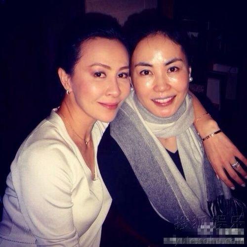 传王菲离婚半年前已部署 赵薇帮助夺抚养权 大