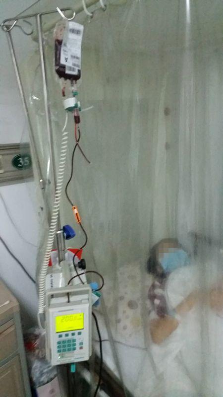 15岁少女罹患白血病 70万骨髓移植费用愁坏父母