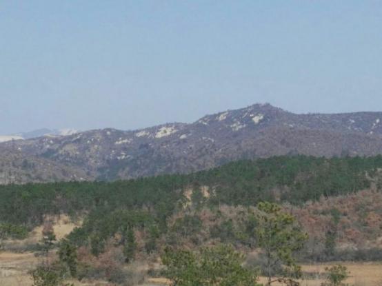 随州矿山生态建设纪实 实现绿色发展新跨越