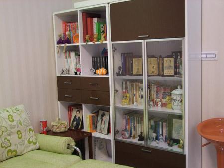 精美的小书柜-省钱装修超强达人 2万元装出95平米二室二厅