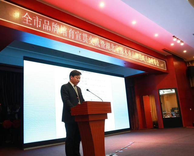 湖北宝源木业品牌战略升级发布会在荆门举行
