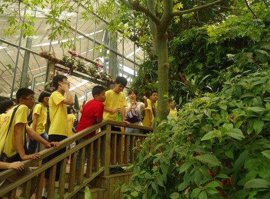 京翰教育暑期系列活动之名企体验之旅