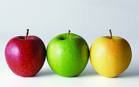2019年最新减肥排行榜_免费减肥app哪个好 减肥软件排行榜2019 好用的减肥