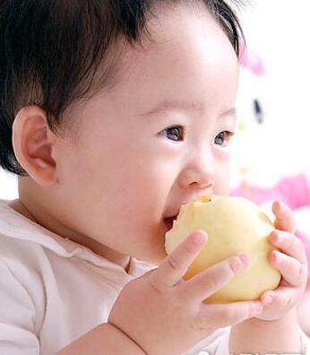 冬天宝宝吃生果 很是有讲究!