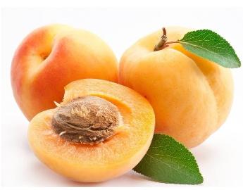 夏季多吃四类水果对儿童无益