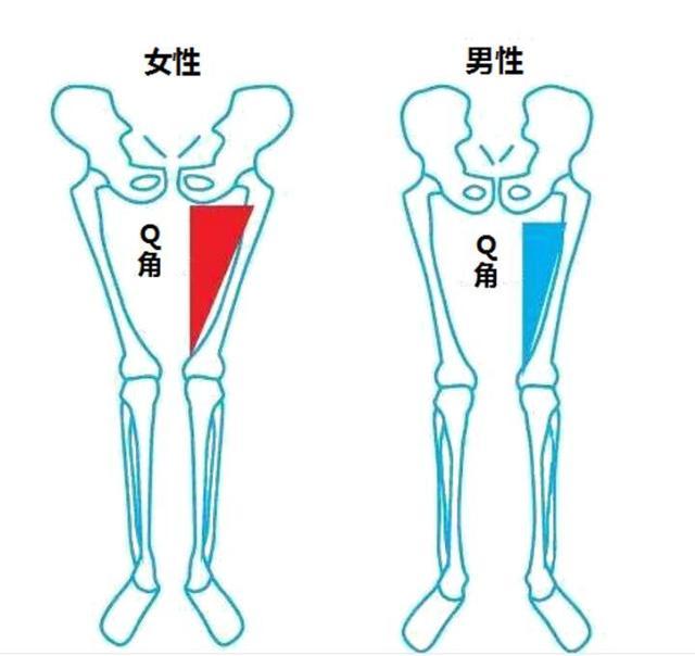 膝关节问题知多少