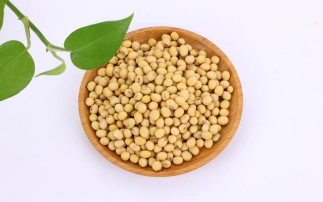 别轻信了!大豆蛋白是不预防心脏病的