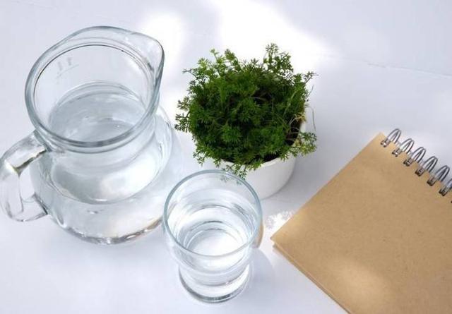 这样喝水最养胃!喝水养生记住这4个数