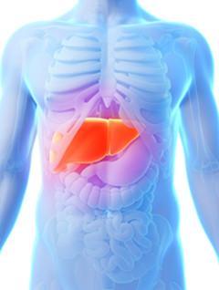 又到世界肝炎日 养肝常识你知道多少?