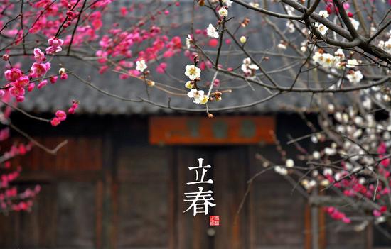 中医专家建议春季养肝时也注意养肺