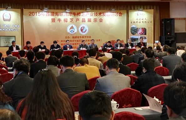 海峡两岸牛樟芝产业技术发展研讨会启动
