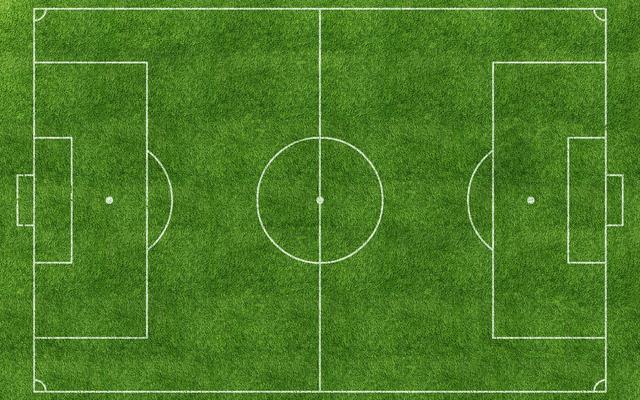 足球场上的人造草皮 真的会导致癌症吗?