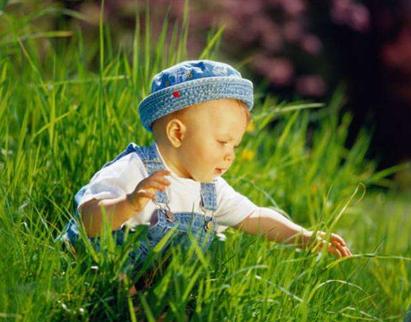 春季BB发育猛 5类食物有助宝宝健康成长