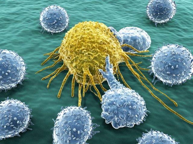 医学前沿:新型相机可以精准识别肿瘤组织