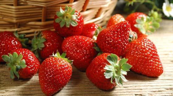 春季草莓为何不能多吃 春季饮食的宜忌