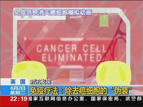 央视报道免疫治疗 有望成为抗癌新利器