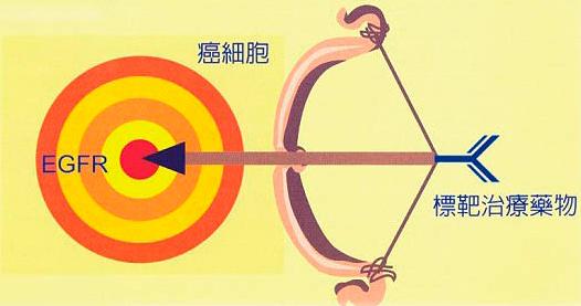 新一代靶向药物中国获批 肺<a target=_blank class='gjclink'  href='http://yongyao.net/zhuanti/aizhen.html'>癌</a>患者迎来希望