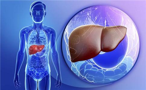 右腹不适或是肝长瘤 瘤大于5厘米考虑手术