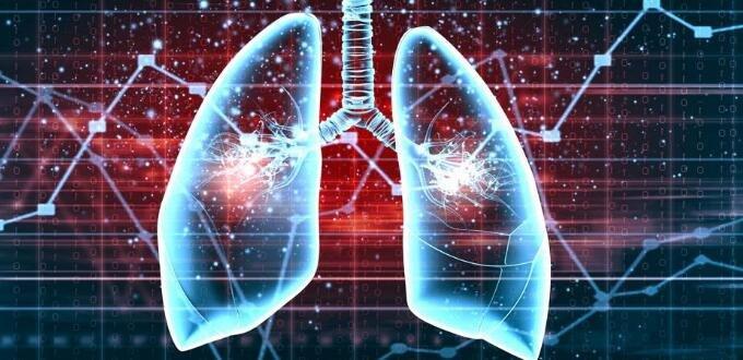 【养生堂】导致肺纤维化的原因是什么?</