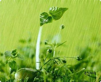 [谷雨]节气养生:15度为春捂临界点