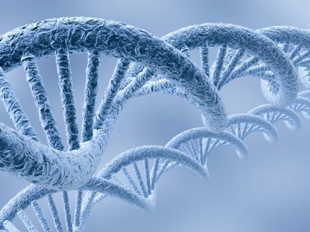 科学家成功鉴别出与强迫症相关的基因变异
