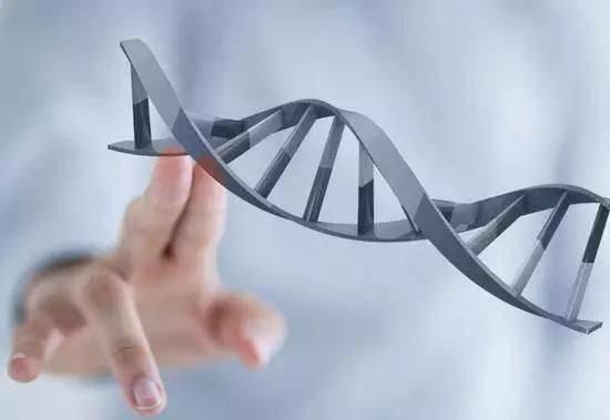 """中国科学家:基因编辑实现""""剪切无残留"""""""