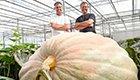 """""""战斗民族""""的蔬菜!最大南瓜重达645公斤"""