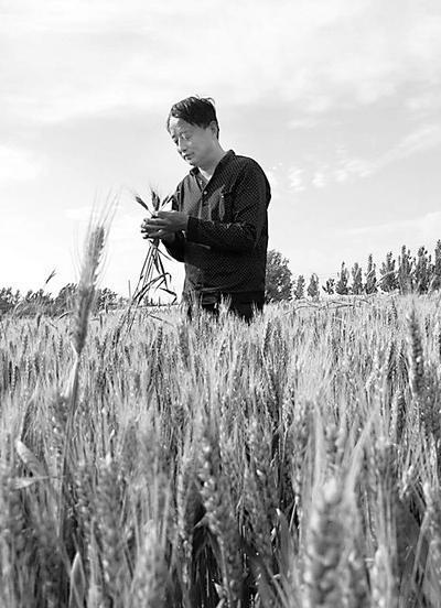 盐山一农民37年坚持写农事日记