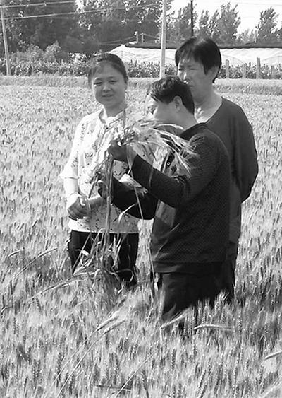 盐山一农夫37年坚持写农事日志