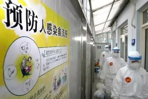 """""""河北7天新增4例H7N9禽流感病例!我们要这样预防!"""""""