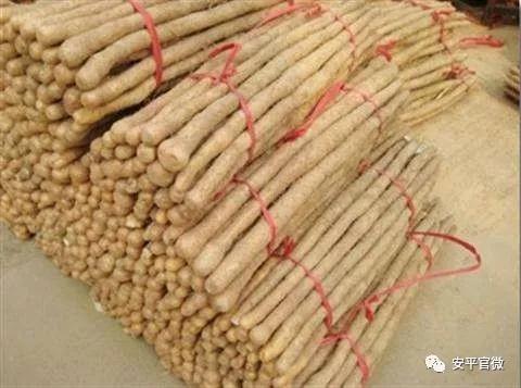 安平县这一产品荣获国家地理标志证明商标